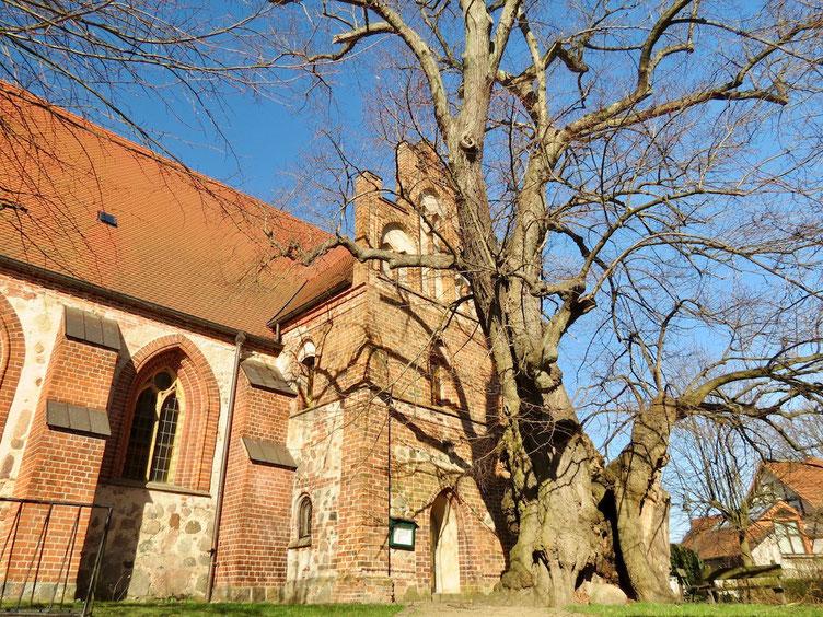 Stadtkirche Wesenberg, St. Marien Kirche, Kirche entdecken Mecklenburg