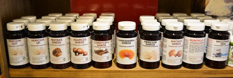 Funghi Medicinali BIO Vendita Online