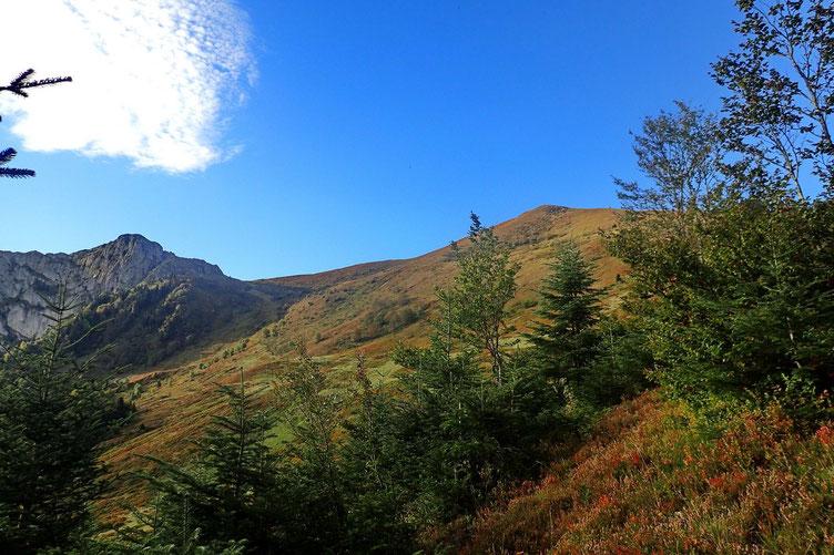 Après quelques minutes, je sors de la forêt et j'aperçois la crête avec un premier sommet sans nom (1913m).