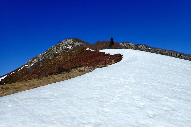 Je suis arrivé à grimper sur la crête sans mettre les pieds dans la neige...