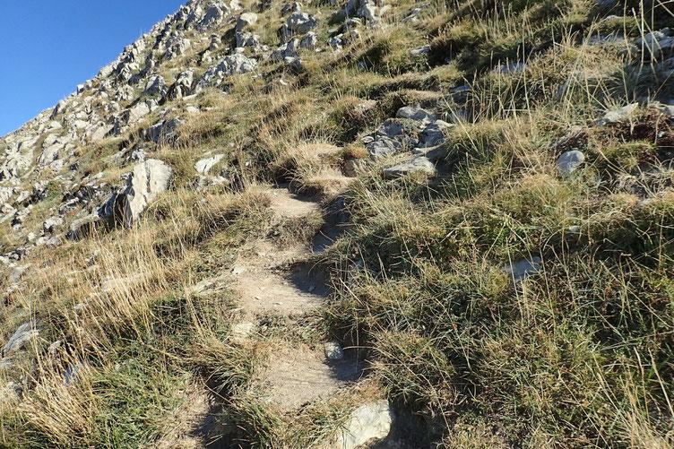 J'ai pris l'option de monter directement, d'autant qu'il y a une petite sente bien marquée avec des pas d'escalier qui facilitent la progression.