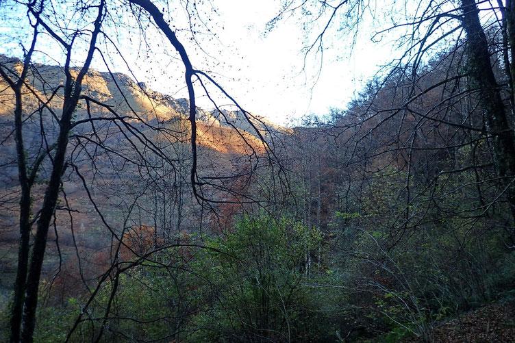 Après quelques mètres dans les bois, une petite trouée pour voir que le soleil est toujours là...