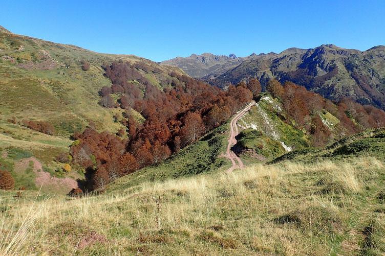 Les couleurs d'automne sont présentes partout.