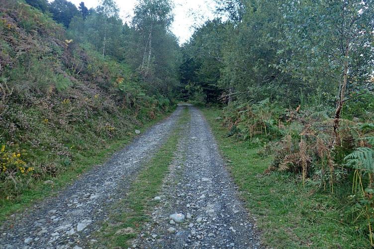 Le sentier coupe et recoupe une piste pastorale.
