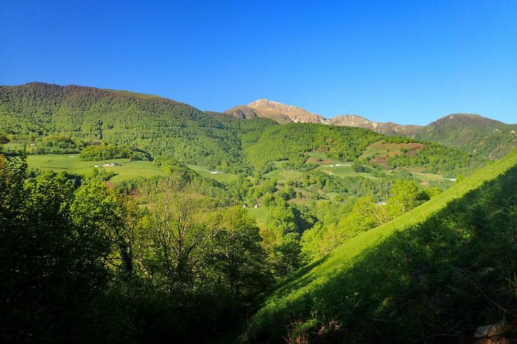Après quelques centaines de mètres, vue sur le Pic d'Orhy.