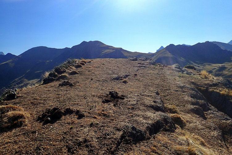 En fait de sommet, il s'agit plutôt d'une plate forme, voire d'un plateau, exposé au vent. Tout le bétail est passé par là, difficile de s'asseoir...