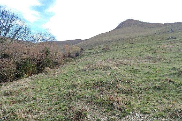 Arrivée (enfin) sur un plateau type montagne à vache.