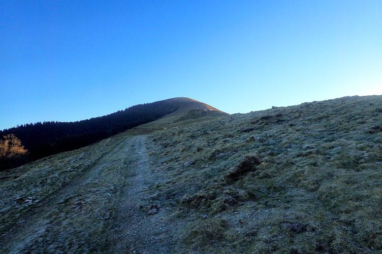 Il n'y a plus qu'à suivre la crête jusqu'en haut (Pic de Montaut).