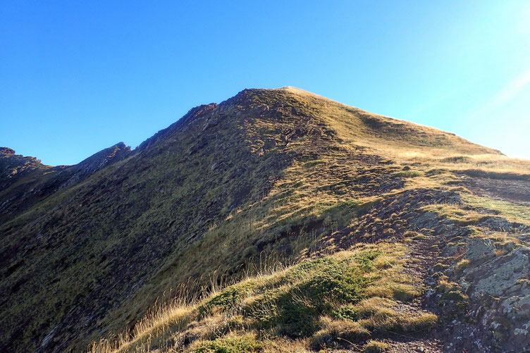 Même si cela monte encore, rien à voir avec la montée au Col de Contendé.