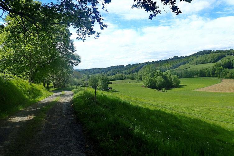 Puis un chemin de campagne...