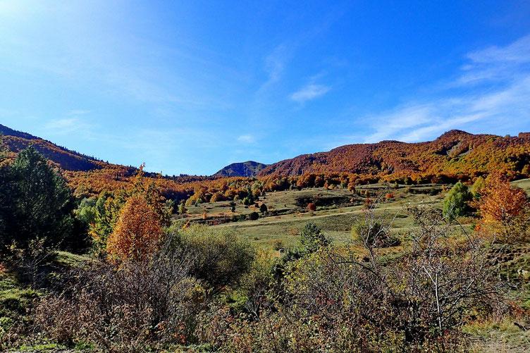 Sortie du bois avec vue sur le Pico de la toquera.