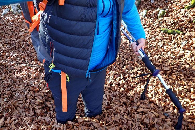 Dans le petit bois, parfois la couche de feuilles mortes arrive jusqu'au genou!