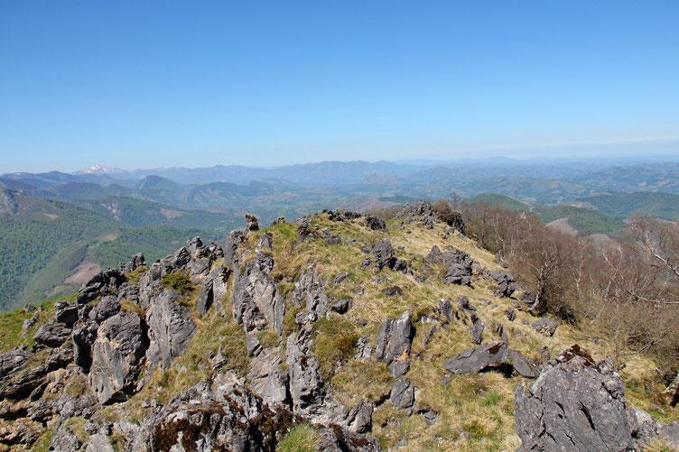 Me voici au sommet (1251m) avec vue vers l'Ouest.