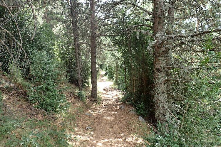 Sinon, le sentier est très agréable.