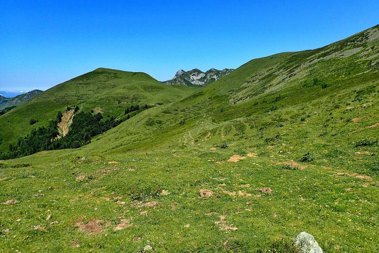 Je me dirige ensuite vers le Col des Arques. Au fond, le Turon de la Goaita (1805). A faire aussi un de ces jours...