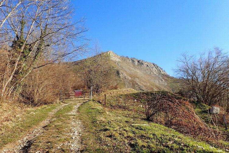 Droit devant moi, le programme de la journée :  le Pic de Peyre, et la crête jusqu'au Pic d'Arragnat.