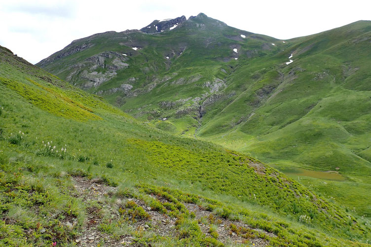 Arrivée juste au dessus du Col de Peyrelue. J'attaque la montée sur la crête.