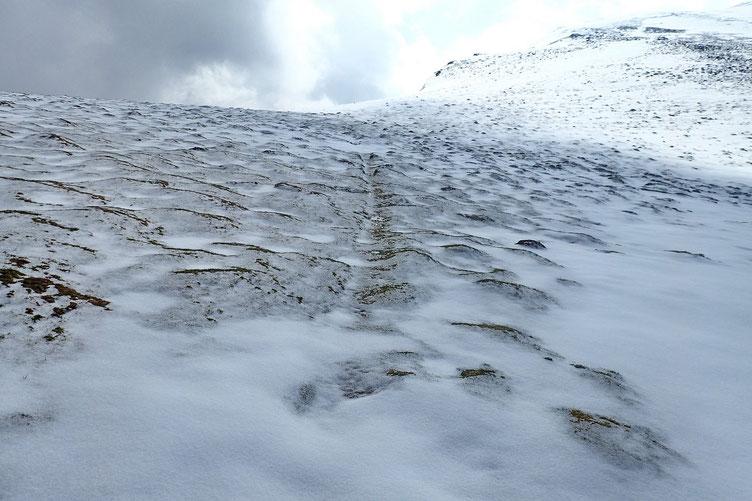 Le sentier reste en core visible, mais plus pour longtemps.