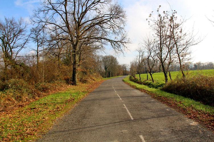 La petite route qui rejoint la base de loisirs.