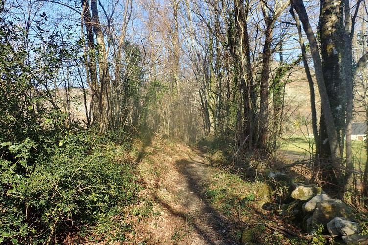 Petit chemin d'où on aperçoit juste derrière les arbres le Coussaout (1098m.)