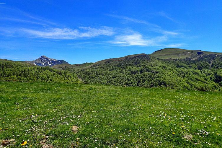 Dont la plupart offrent une vue superbe sur les Pyrénées.