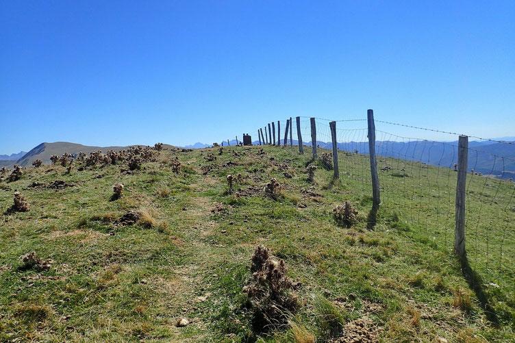 Jusqu'au sommet de l'Axurterrigagna, modeste sommet (1660m.) mais tout aussi venté que le Pic d'Orhy.