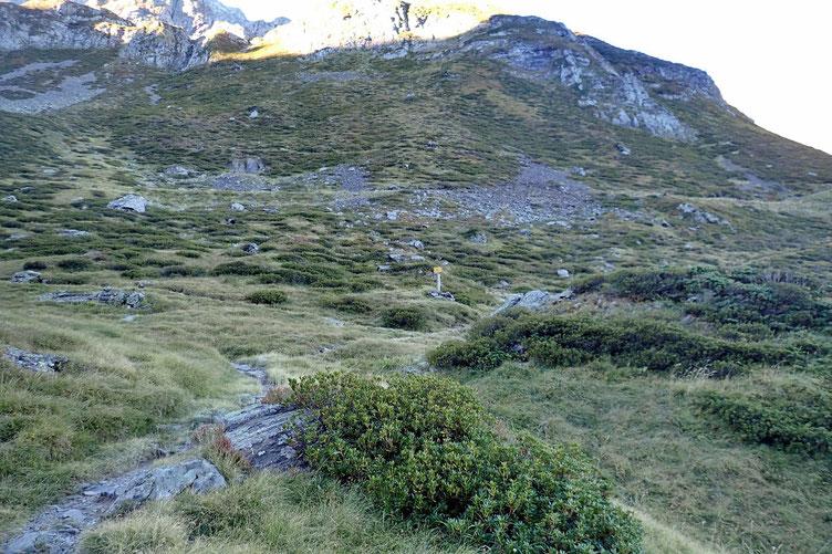 Croisement pour le Col de Pierrefitte (et le Lac de Burgalet) ou le Lac de Maucapéra.