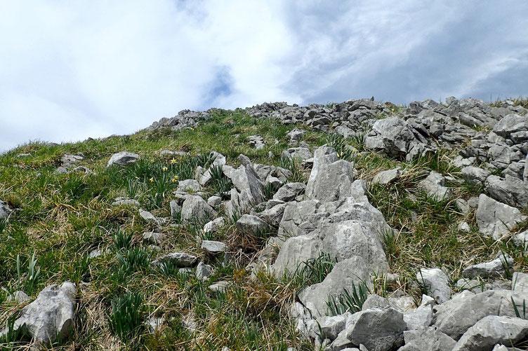 Le plus dur est de trouver un bon passage au travers de tous ces rochers...