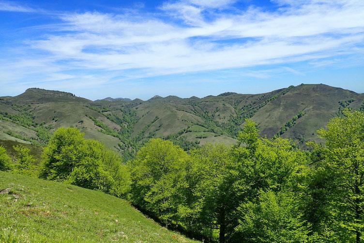 Paysage Basque.