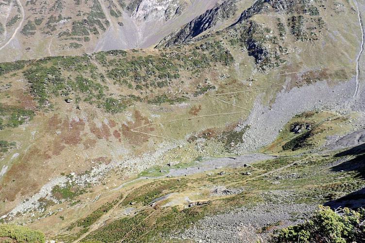 Le sentier qui monte vers le Col de Pierrefitte.