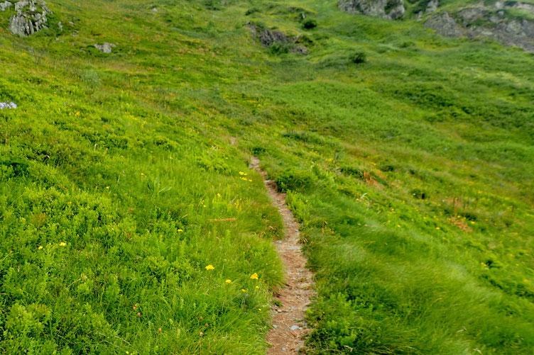 Le sentier reste bien marqué et s'incline de plus en plus...