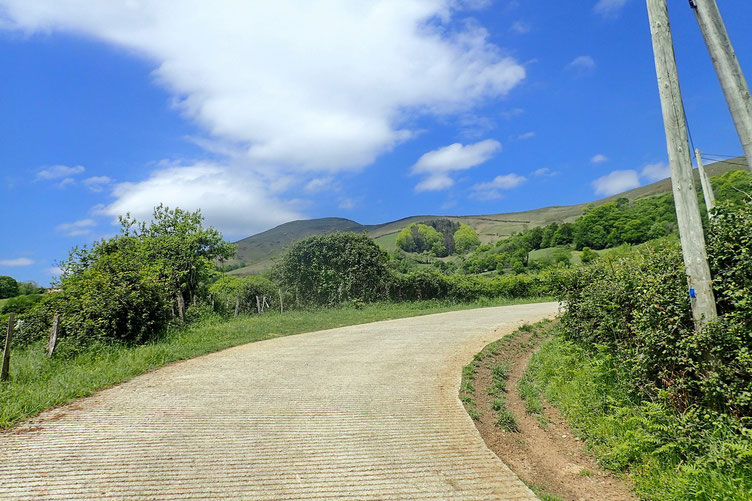 Retour sur une piste avec derrière moi le Mont Ursuya.