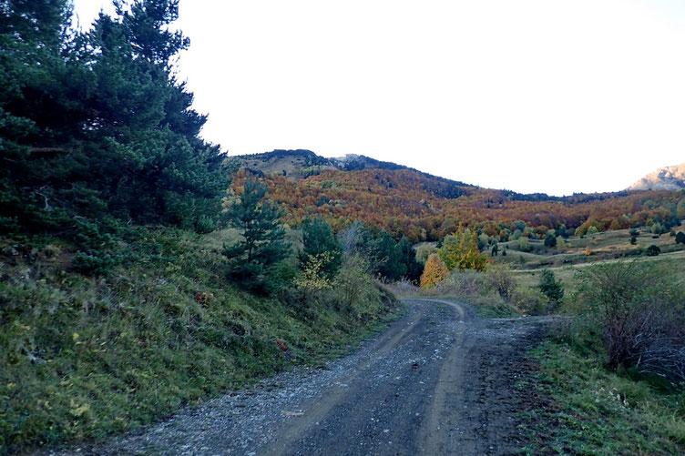 Les couleurs de l'automne sont bien là...