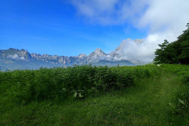 Du Belvédère, tous les sommets du secteurs (Billare, Dec de Lhurs, Ansabère...)