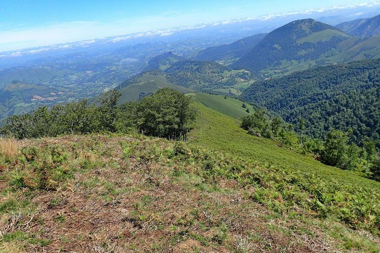 Après la pause déjeuner, descente par le versant Nord.