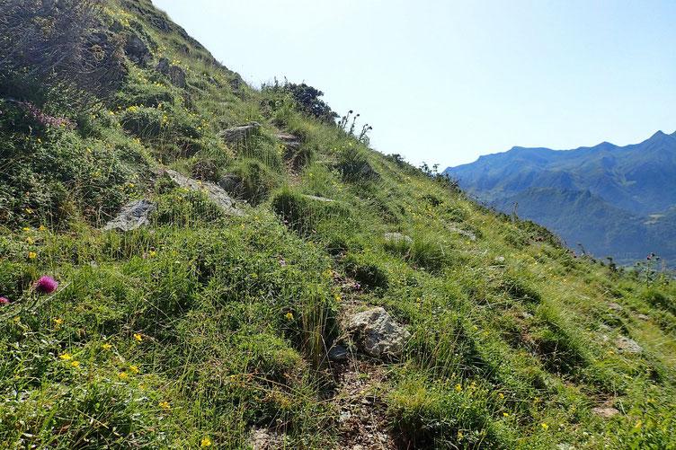 Il y a un petit sentier qui permet d'accéder sans trop de difficultés au sommet.