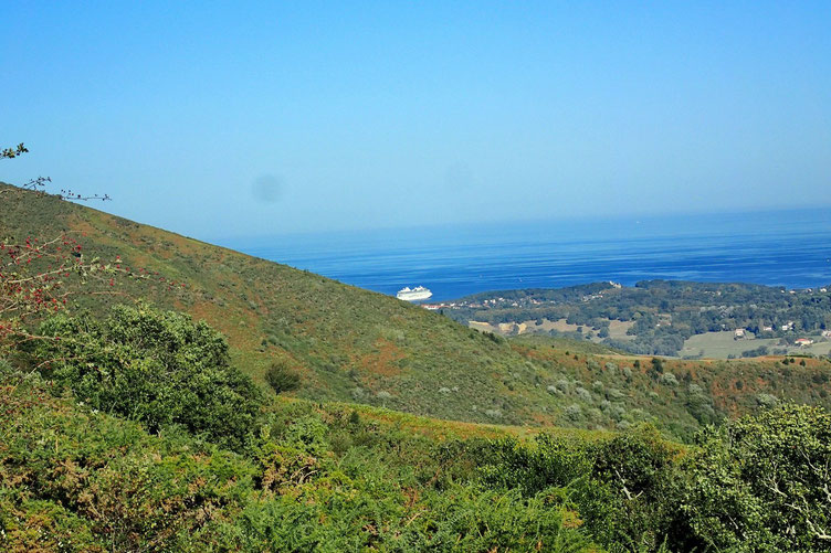 L'océan a l'air très calme.