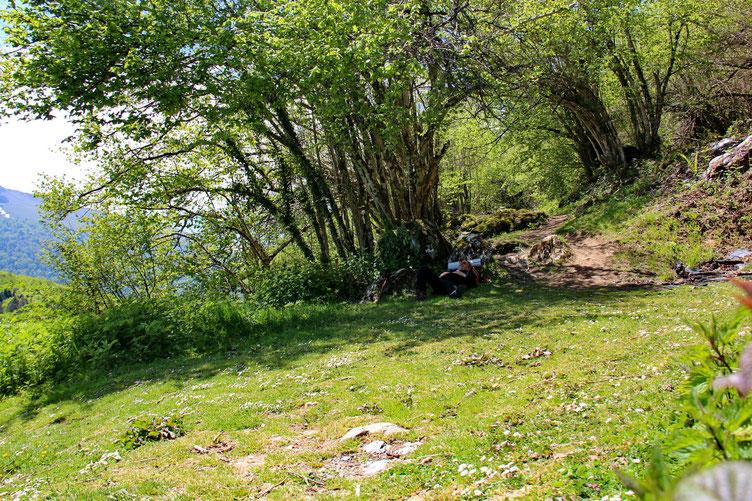 Et je m'autorise un petit instant de repos à l'ombre d'un arbre!