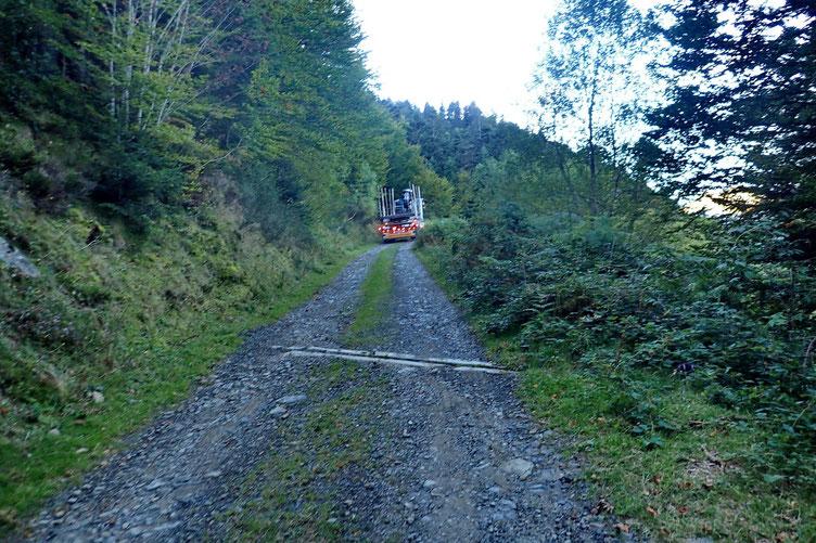 Piste pastorale empruntée par de gros camions pour le transport du bois...