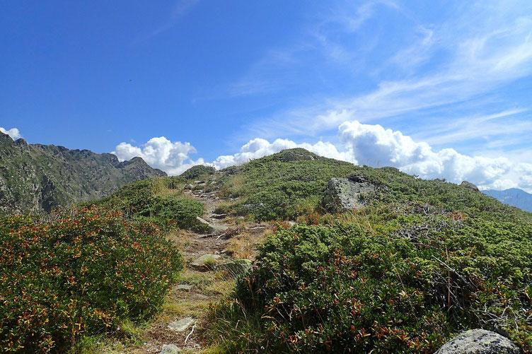 Petite éminence qui culmine à 2258 m.