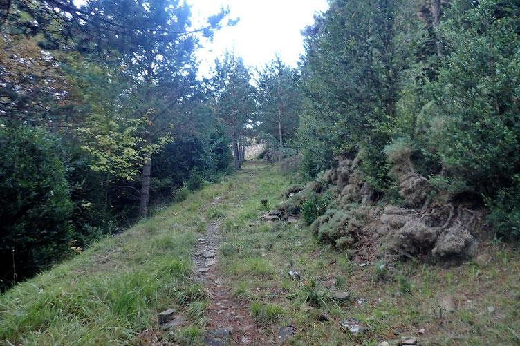Le sentier (rude par endroit) qui rejoint la crête.