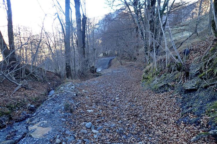 Avant de rejoindre la petite route goudronnée.