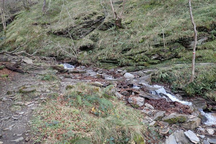 Evidement, il faut traverser bon nombre de petits torrents qui se jettent dans l'Olhadubi.