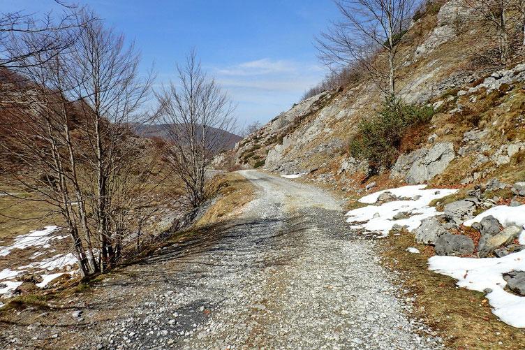 Ce n'est que vers 1300-1400 m que la neige disparaît.