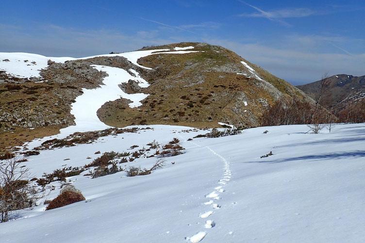 Et une montée dans la neige. Vue sur le Sommet de Sésérite.
