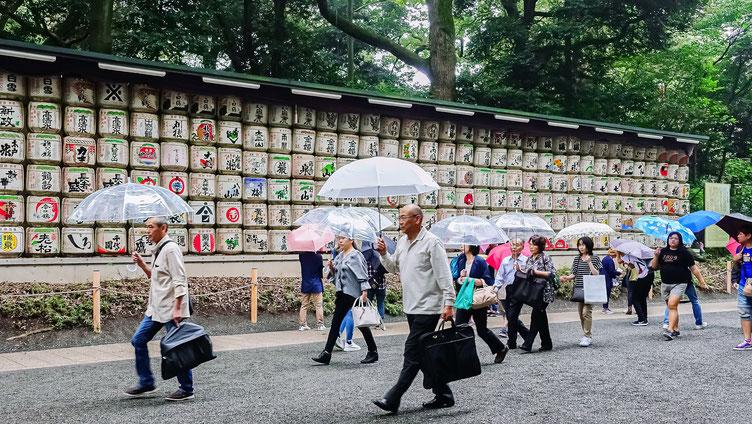 Tonneaux de saké, Meiji-Jingu, Tokyo