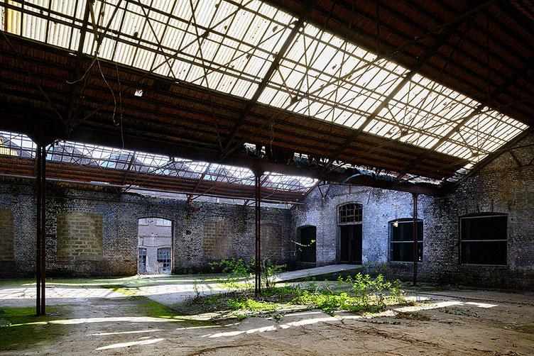 Urbex, Ruine Industriehalle mit durchbrochenem Glasdach. Z 7 mit PC-E 24 mm 1: 3,5D ED. Foto: Dr. Klaus Schörner