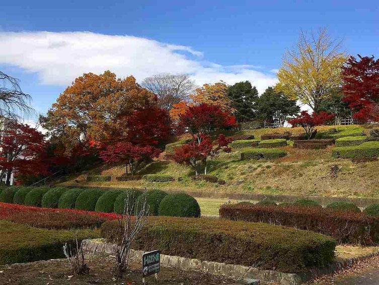 「松明あかし」でも有名な翠ヶ丘公園は紅葉が美しい