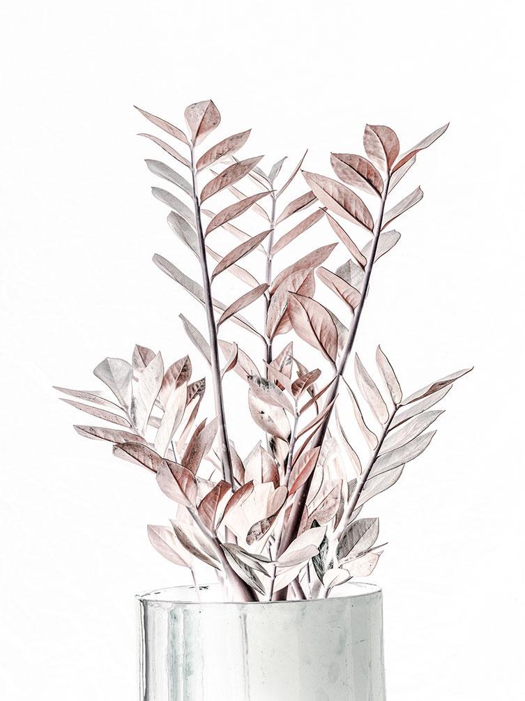 Abstraktes Blumenarrangement in Vase vor weißem Fond als Farbphoto