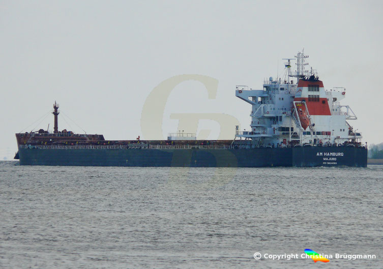 Bulk Carrier AM HAMBURG, Elbe 09.04.2019